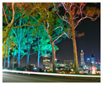 Perth City Tours by limousine via Kings Park at Night