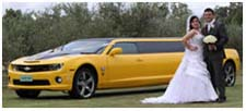 Camaro Wedding Limousine Hire Perth with the Bumblebee Transformer Muscle Car Limousine. Wedding Ribbon with decoration for Bride and Groom in Caversham House, Swan Valley